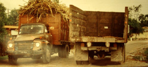 cane truck